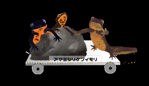 ケナガネズミとオットンガエル&アマミハナサキガエル、アマミシリケンイモリを描きました